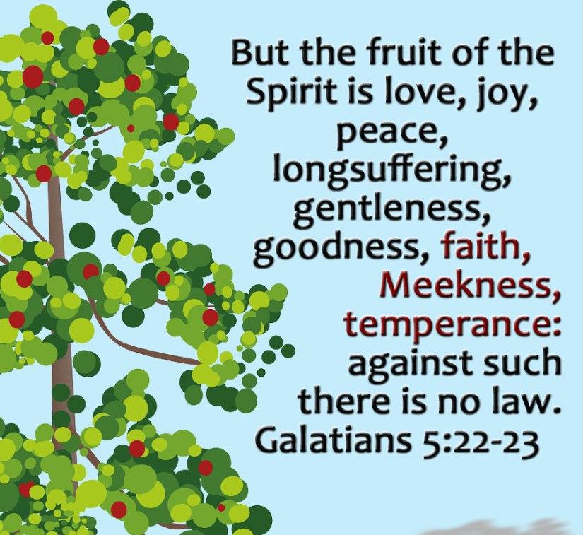Galatians522_23c