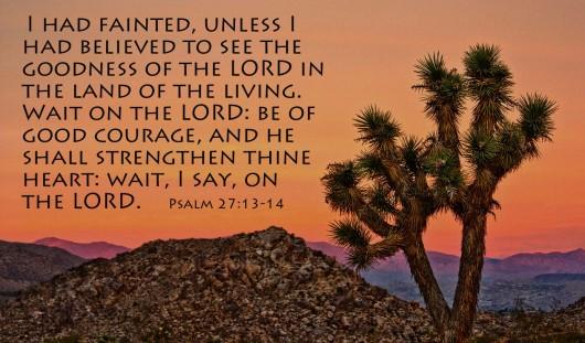 psalm271314